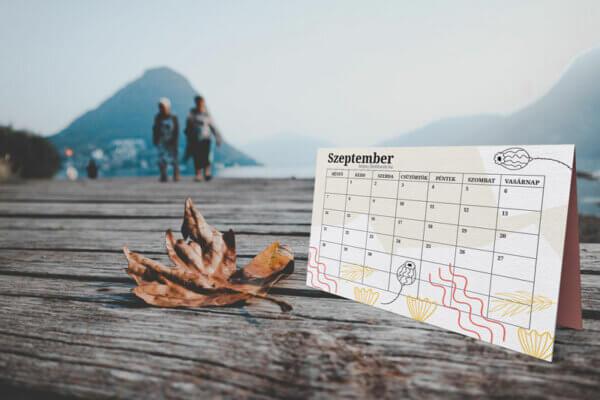 szeptemberi tervező naptár vállalkozásoknak